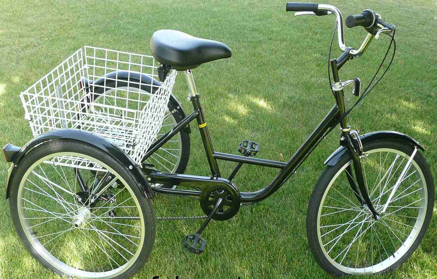 6 speed adult tricycle